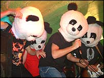 _40097843_pandas_action203_1